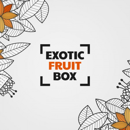 exotic branding ecommerce logo