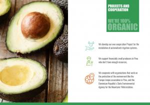 desarrollo web branding marketing sector agroalimentario presentacion